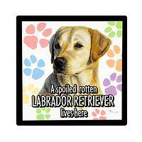 Adorable Warning  - Yellow Labrador Retriever Flexible Magnet