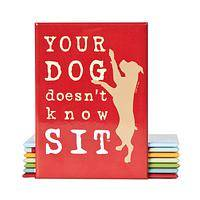 Your Dog Doesn't Know Sit - Cute Dog Fridge Magnet by Dog Is Good Brand