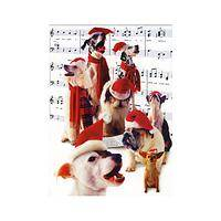 Caroling Canines - Merry Chris-mutts Box of Holiday Cards