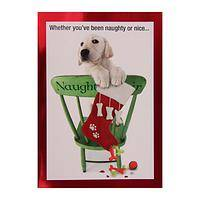 Naughty - But So Darned Cute! - Naughty Puppy Christmas Cards (Box of 15)