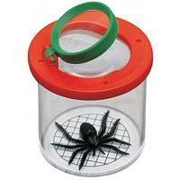 Little Explorer  - Child's Bug Viewing Container