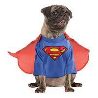 It's Superdog! - Superman Pup Costume Celebrates the Superhero in Your Dog