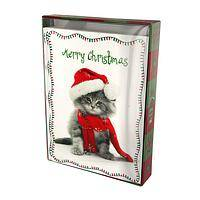 Santa Kitty Says... - Christmas Cat Holiday Cards (Set of 15 with Envelopes)