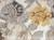 Modern floral ivory/yellow wool blend area rug, 'Garden in Neutral' - Modern Floral Ivory/Yellow Wool Blend Area Rug (image 2e) thumbail