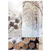 Photo Winter Christmas Cards - Unicef Christmas Charity Cards