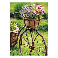 Gardens Greeting Cards - Unicef Charity Greeting Cards