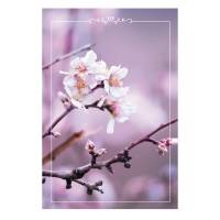 The Beginning of Spring Card Set - Unicef Card Set