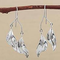 Silver dangle earrings, 'Solitude' - Silver dangle earrings
