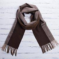 Men's 100% alpaca scarf, 'Puno Winter'