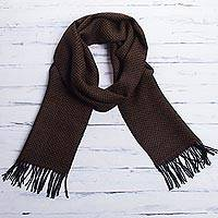 Men's 100% alpaca scarf, 'Mantaru Night'
