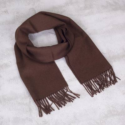 Men's 100% alpaca scarf, 'Earth Brown' - Men's 100% alpaca scarf