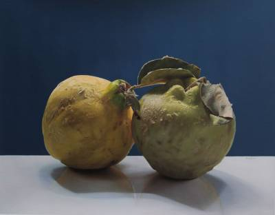 'Your Flavor is Disconcerting' (2014) - Hyper Real Still Life with Quinces