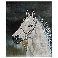 'Captive' - Andean Original Oil Painting of a White Horse
