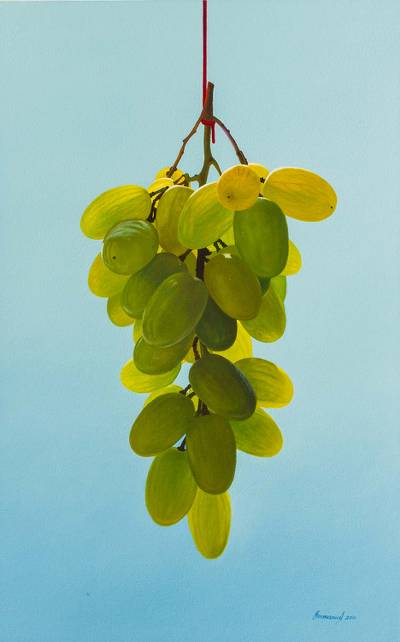 'Caressed by the Wind' - Andean Oil on Canvas Realistic Painting of Grapes