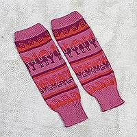 Alpaca blend leg warmers, 'Alpaca Rainbow' - Knit Alpaca Blend Leg Warmers in Rose from Peru