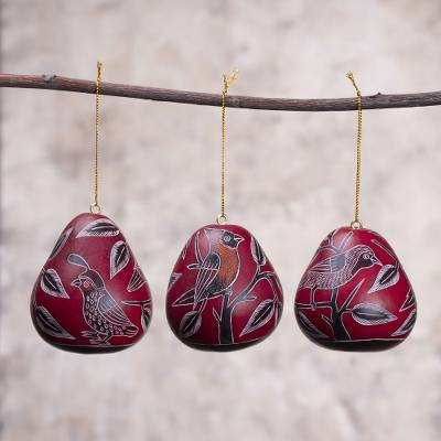 Dried mate gourd ornaments, 'Moon Birds' (set of 3) - Dried Mate Gourd Hanging Bird Ornaments from Peru(set of 3)