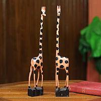 Wood sculptures, 'Happy Giraffes' (pair) - Hand Carved African Sese Wood Giraffe Sculptures