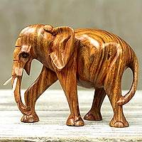 Wood sculpture, 'Perseverant Elephant' - Hand Made Wood Sculpture of an Elephant from Ghana