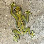 Unique Hand Crafted Steel Wall Art Sculpture, 'Mexican Tree Frog'