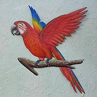 Steel wall art, 'Scarlet Macaw' - Handcrafted Red Steel Bird Theme Wall Sculpture from Mexico
