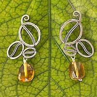 Amber dangle earrings, 'Grains of Taste' (Mexico)