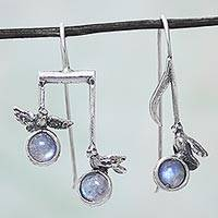 Rainbow moonstone drop earrings, 'Bird Melodies' - Birds Musical Notes Silver Earrings with Rainbow Moonstone