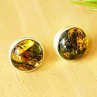 Amber stud earrings, 'Natural Rounds' - Round Amber Stud Earrings from Mexico