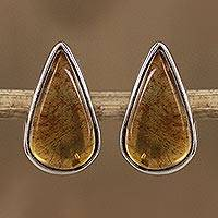 Amber stud earrings, 'Drop Complexity' - Drop-Shaped Amber Stud Earrings from Mexico