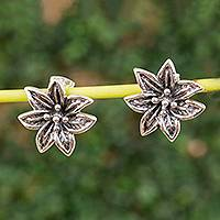 Sterling silver button earrings, 'Elegant Poinsettia' - Sterling Silver Poinsettia Button Earrings from Mexico