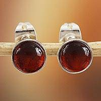 Amber stud earrings, 'Ancient Bucklers' - Natural Amber Stud Earrings Crafted in Mexico