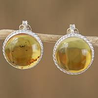 Amber button earrings- 'Round Gold' (Mexico)