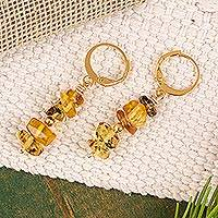 Gold plated amber beaded dangle earrings, 'Ancient Colors' - Gold Plated Natural Amber Beaded Dangle Earrings from Mexico