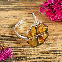 Amber cocktail ring, 'Ancient Luck' - Amber Four-Leaf Clover Cocktail Ring from Mexico