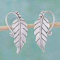 Sterling silver drop earrings, 'Silver Vineyard' - Sterling Silver Leaf Drop Earrings