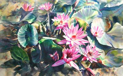 'Fragile Lotus' (2006) - Floral Realist Painting