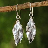 Sterling silver cluster earrings, 'Silver Leaves'