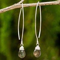 Labradorite dangle earrings, 'Sublime' - Sterling Silver and Labradorite Dangle Earrings