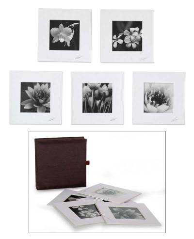 'Reflections of Summer' (set of 5)