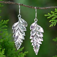 Natural leaf silver plated drop earrings, 'Fern Love' - Silver Plated Natural Leaf Earrings