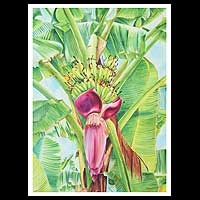 'Banana Tree Forest II' - Realist Landscape Painting
