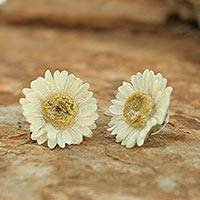 Natural flower earrings, 'White Aster' - Natural Flower Button Earrings