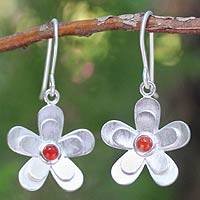 Carnelian flower earrings, 'Sunlit Frangipanis' - Hand Crafted Sterling Silver and Carnelian Dangle Earrings
