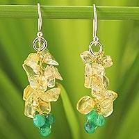 Citrine beaded cluster earrings,