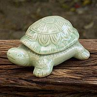 Celadon ceramic box, 'Green Thai Turtle' - Handcrafted Green Thai Celadon Ceramic Turtle Box