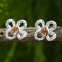 Citrine button earrings,