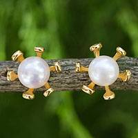 Gold vermeil cultured pearl button earrings,