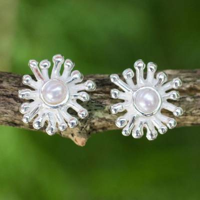 Cultured pearl stud earrings, 'Petite Seaflower' - Fair Trade Pearl and Sterling Silver Button Earrings