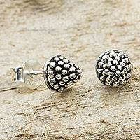 Sterling silver stud earrings, 'Shining Berry' - Fair Trade Silver Berry Theme Stud Earrings