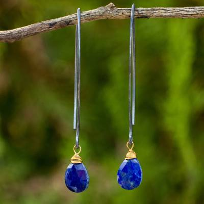 Lapis lazuli dangle earrings, 'Midnight Meadow' - Sterling Silver and Gold Accent Earrings with Lapis Lazuli