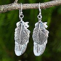 Sterling silver dangle earrings, 'Feathers' - Double Feather Sterling Silver Earrings Handmade 925 Jewelry
